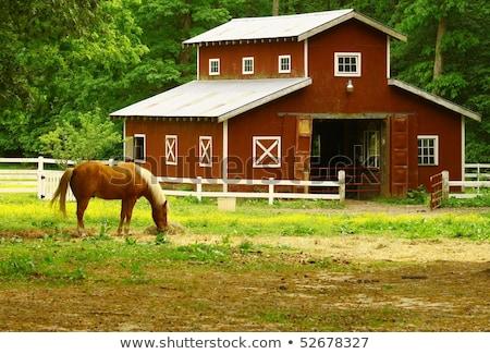 Vieux rouge foin grange herbe domaine Photo stock © njnightsky
