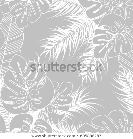 Tropical design with monstera palm leaves and plants on gray bac Stock photo © BlueLela