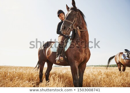 female jockey and girl embracing horse stock photo © wavebreak_media