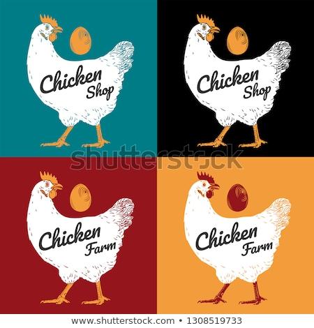 鶏 ファーム エンブレム 卵 ロゴ 家禽 ストックフォト © MaryValery