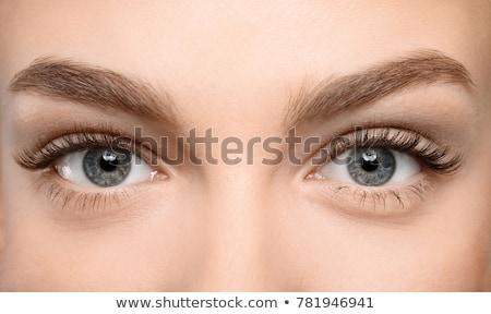szem · smink · nő · szempilla · smink · arc · törődés - stock fotó © kurhan