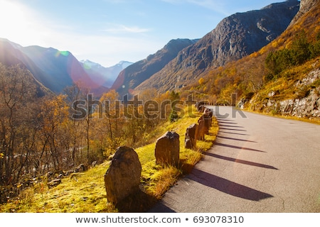 gamle strynefjellsvegen in norway Stock photo © compuinfoto