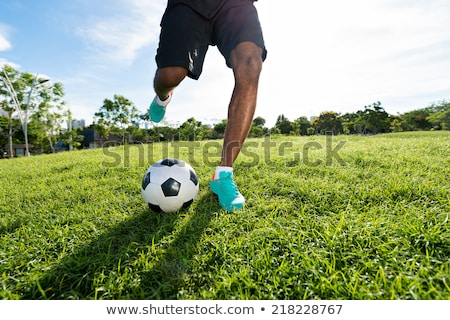 Goalkeeper kicking football in the ground Stock photo © wavebreak_media