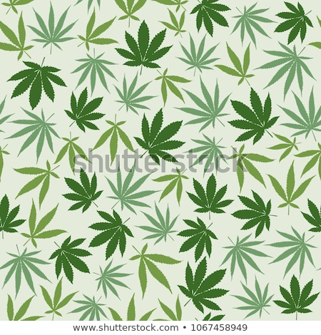 Cannabis leafs seamless pattern. Vector background of narcotic p Stock photo © popaukropa