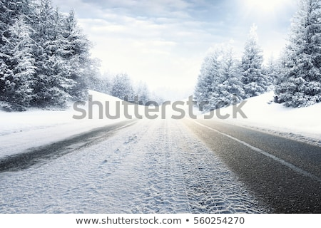 Stock photo: Beautiful winter background with trees cover snow and street lig