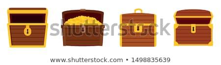 Ilha completo ilustração dinheiro paisagem Foto stock © bluering