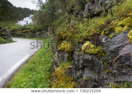 Turista rota Noruega lago estrada norueguês Foto stock © Kotenko