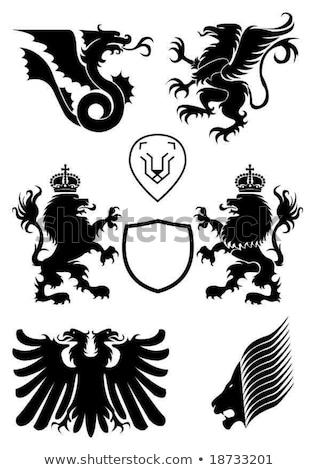oroszlán · pajzs · szimbólum · felirat · állat · kabát - stock fotó © maryvalery