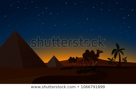 desert with pyramids at night stock photo © bluering