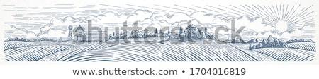csőr · farm · rajz · illusztráció · terv · vektor - stock fotó © bluering