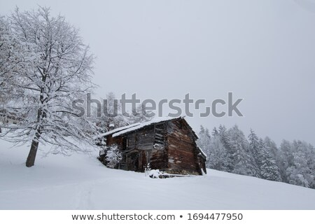 Edad cabina alpes verano Austria edificio Foto stock © michaklootwijk