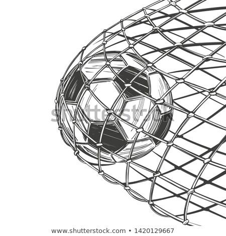 スコア · 目標 · サッカーボール · 純 - ストックフォト © angelp