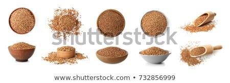 greggio · tutto · sementi · legno · raccogliere · bianco - foto d'archivio © melnyk