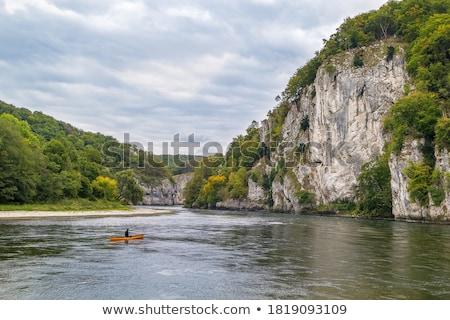 Dunaj Niemcy wody drzewo drewna lasu Zdjęcia stock © borisb17