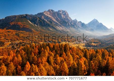 Autumn in Alps. Stock photo © rudi1976