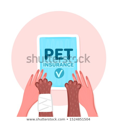 pet insurance paws of brown cat with bandage and woman hands together blue document with check mar stock photo © user_10144511
