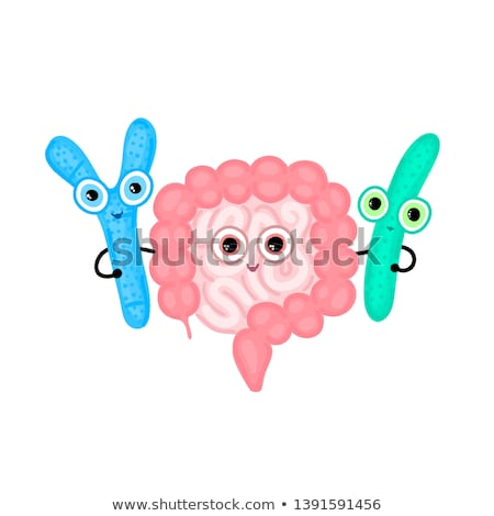 intestines hugging with probiotics digestive tract large and small intestine bifidobacterium and stock photo © user_10144511