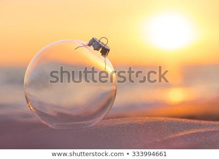Glass Ball Christmas Tree Concept Stock photo © Anna_leni