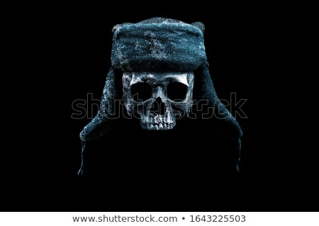 Skull with hat with ear flaps Stock photo © netkov1
