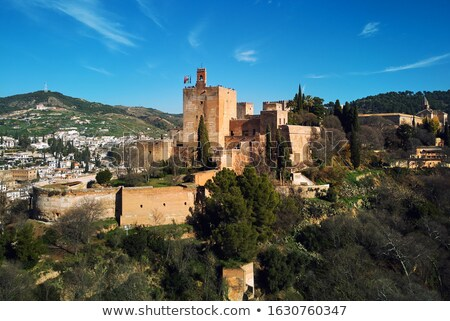 Aerial beautiful drone point of view Granada castle surrounding  Stock photo © amok