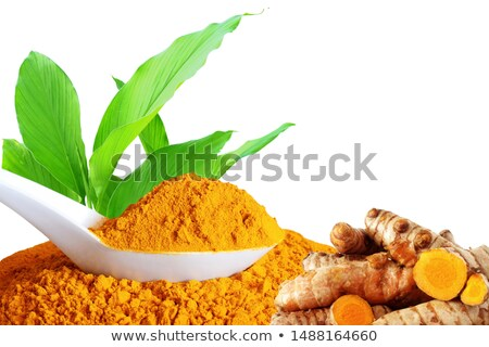 Ginger root and powder. Turmeric root and powder. On a colored wooden background Stock photo © galitskaya