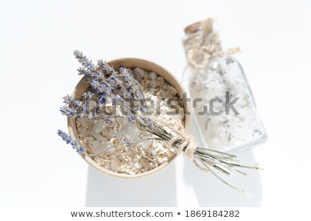 Lujoso sal marina concha fondo Foto stock © grafvision
