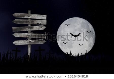 Foto stock: Halloween · conselho · imagem · objetos · festa