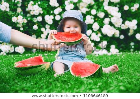 nagymama · felnőtt · lánygyermek · unoka · piknik · nő - stock fotó © jamirae