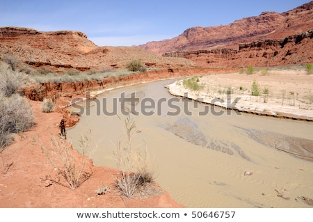 paria canyon river flowing toward lonely dell ranch stock photo © gwhitton