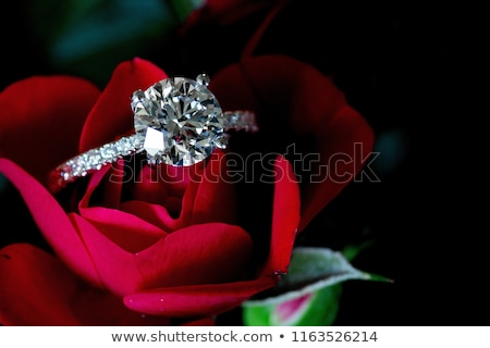 diamanten · ring · bloemen · glas · steen · geschenk · ring - stockfoto © njaj
