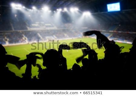 european soccer 2012 stock photo © creisinger