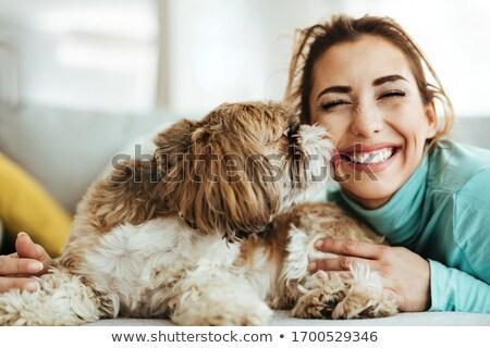 Dog licking woman Stock photo © photography33