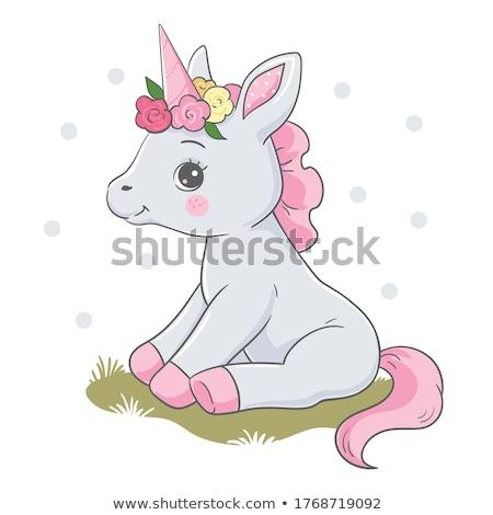 Grey baby pony Stock photo © Elenarts