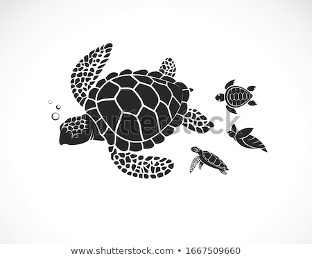 Stock photo: silhouette of little turtle