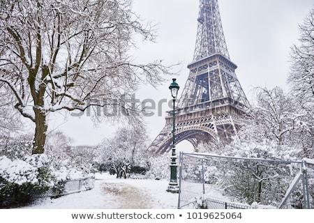 Winter in Paris Stock photo © RazvanPhotography