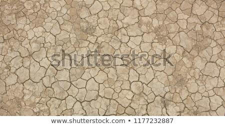 Pęknięty suszy błoto tekstury pomarańczowy hot Zdjęcia stock © meinzahn