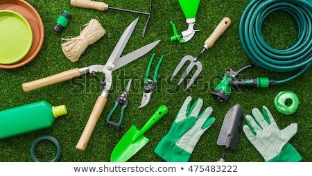 Kerti eszközök gumicsizma gereblye citromsárga kesztyű természet Stock fotó © taden