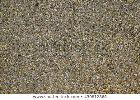 Old Stone Country Road. Seamless Tileable Texture. Stock photo © tashatuvango