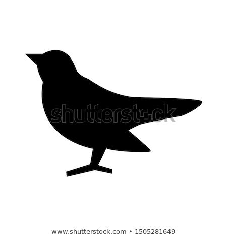 Black Bird Icon Stock photo © cidepix
