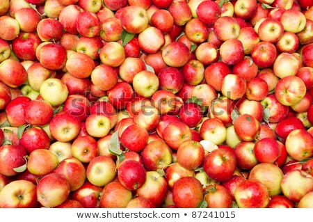 Freshly harvested colorful crimson crisp apples on display at th Stock photo © alex_grichenko