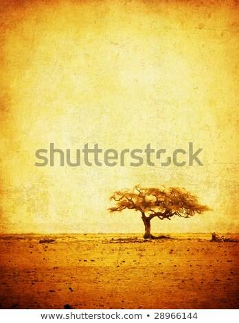 çim · dağ · gökyüzü · doğa · alanları - stok fotoğraf © vook