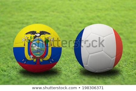 Honduras vs Ecuador groep fase wedstrijd Stockfoto © smocker03