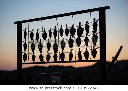 Stock fotó: Hal · tengerpart · étel · természet · halászat · piac