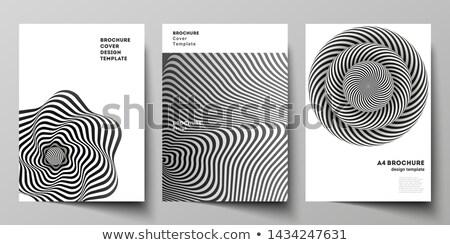 оптический Flyer журнала охватывать шаблон бизнеса Сток-фото © rioillustrator