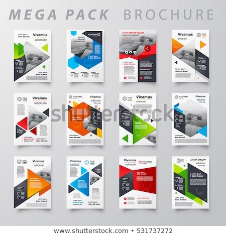 ingesteld · infographics · flyer · brochure · ontwerpen · ontwerp - stockfoto © DavidArts
