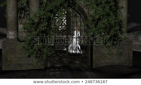 魔女 · 月光 · 実例 · 女性 · 面白い · クリスマス - ストックフォト © ankarb