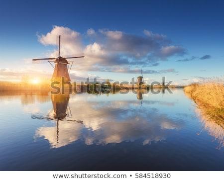 windmill in Dutch landscape Stock photo © adrenalina