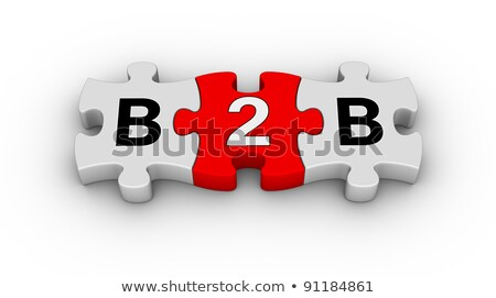 B2B - White Word on Red Puzzles. Stock photo © tashatuvango