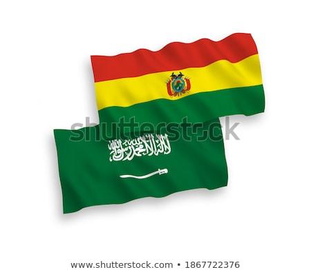 Szaúd-Arábia Bolívia zászlók puzzle izolált fehér Stock fotó © Istanbul2009
