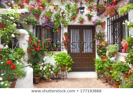 Street of Flowers in Cordoba in Spain Stock photo © backyardproductions